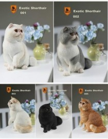 MR.Z Exotic Shorthair Cat (Garfield) 1/6TH Scale Statue